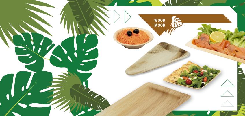 Découvrez notre nouvelle gamme palmier